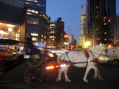 Photo of horse and buggy amid traffic in Columbus Circle taken by Joana Miranda