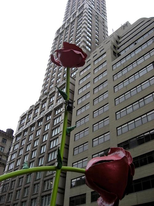 Photo of rose bud sculpture on Madison Ave., taken by Joana Miranda