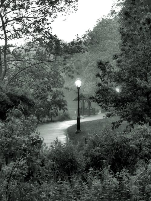 Photo of hazy path through Central Park at dusk, taken by Joana Miranda