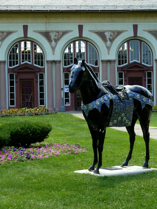Photo of painted black horse in Saratoga Springs, NY, taken by Joana Miranda