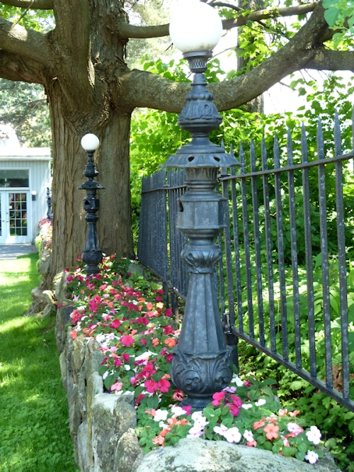 Photo of garden and iron fence in Saratoga Springs, NY, taken by Joana Miranda