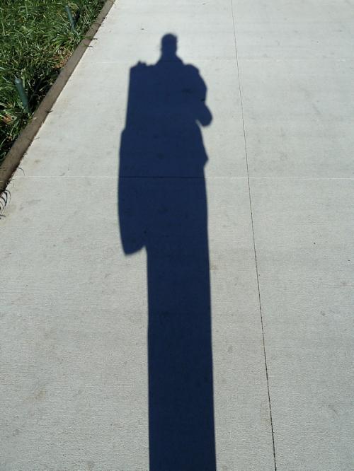 Photo of shadow, taken by Joana Miranda