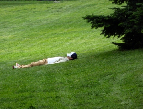 Photo of man asleep on a grassy hill in Central Park, taken by Joana Miranda