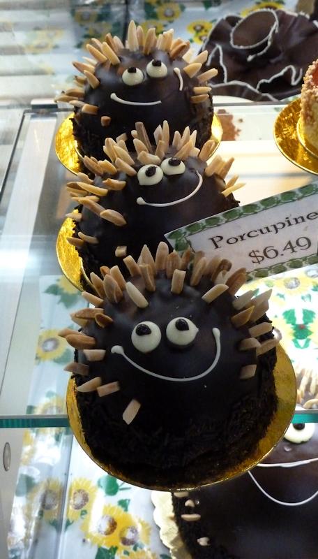 Photo of chocolate porcupine cakes taken by Joana Miranda