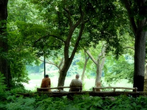 Photo of two men in a shady glen in Central Park, taken by Joana Miranda
