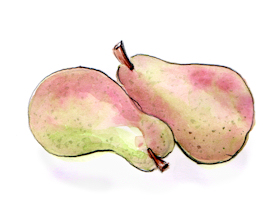 "Whimsical watercolor illustration ""Pears"" by Joana Miranda"