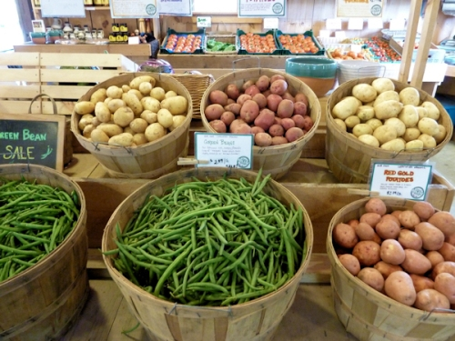 Photo of green beans and potatoes at Killdeer Farm Stand, Vt, photo taken by Joana Miranda