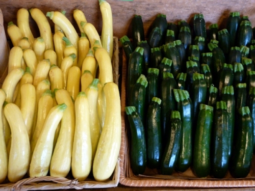 Photo of fresh zucchini at Killdeer Farm Stand, VT; photo by Joana Miranda