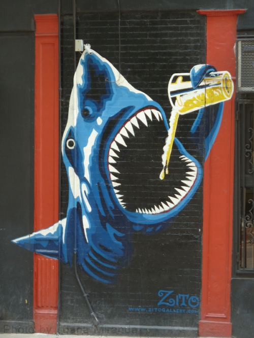 Photo of graffiti shark drinking a beer, taken by Joana Miranda