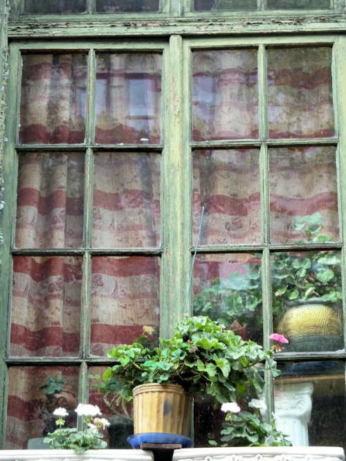 Photo of window with flower pots and drawn curtains taken by Joana Miranda