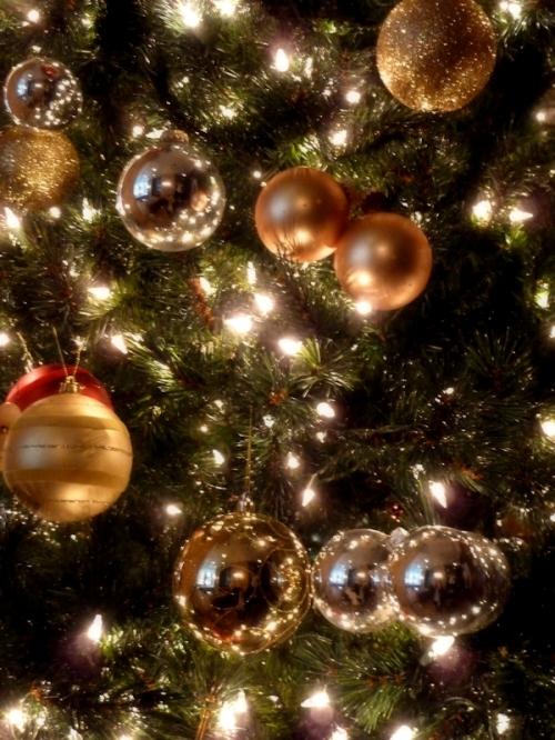 Photo of holiday ornaments on a tree, taken by Joana Miranda