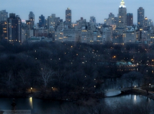 Twilight over Central Park