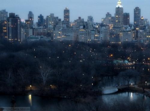 Twilight over Central Park
