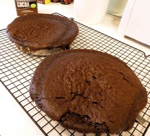 chocolate cakes fresh out of the oven