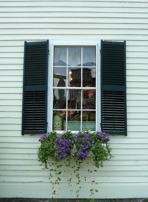 antique shop with flower window box