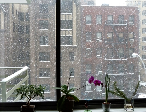 Snowy New York Apartment Window