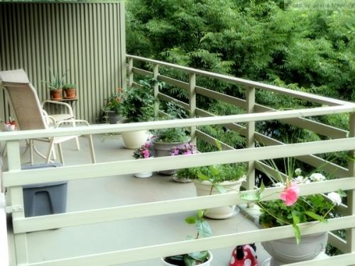 My 2014 summer balcony