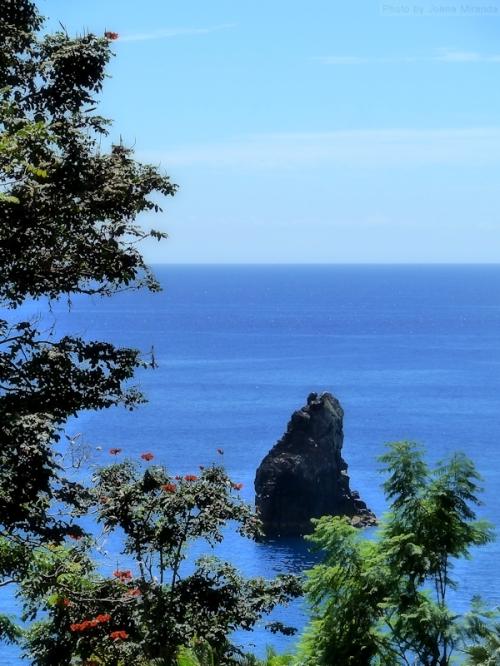 Madeira coastal rocks