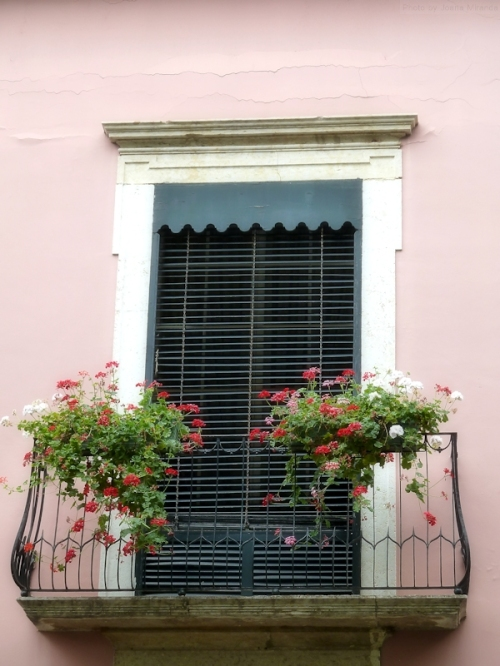 window on pink house in Madeira