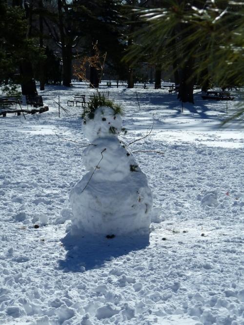 Central Park snowman 2015