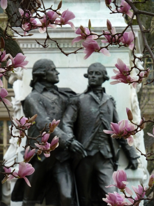 magnolia blossoms framing two statues