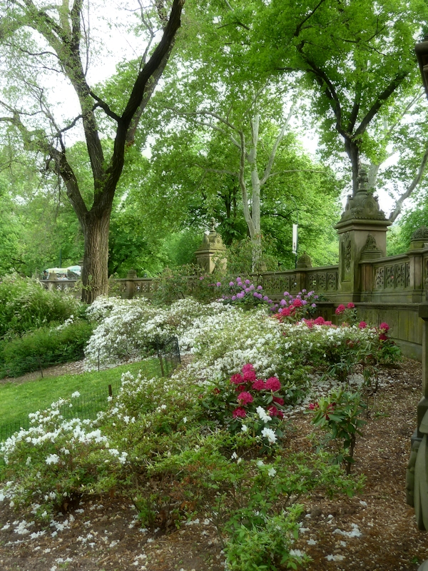 Central Landscape And Garden Drury : All gardening is landscape painting