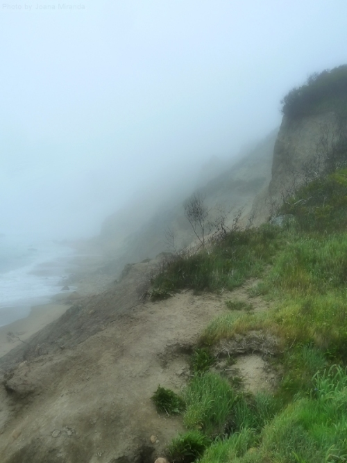bluff on Block Island in the fog