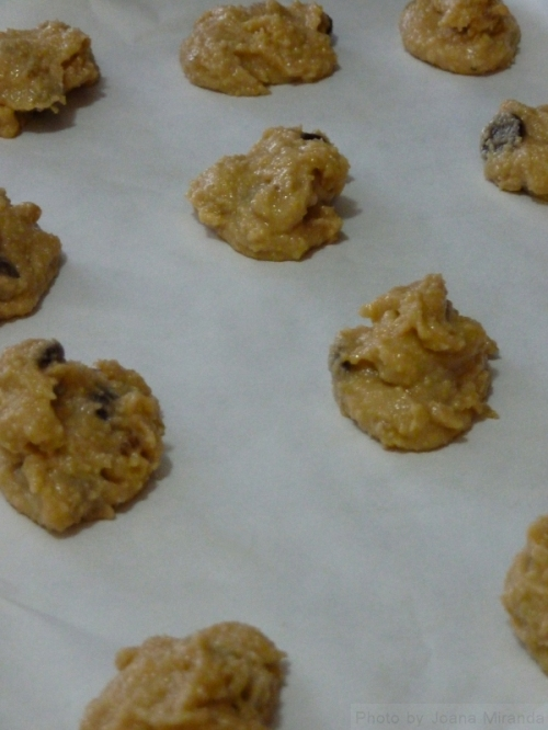 ginger chocolate chip cookies dough