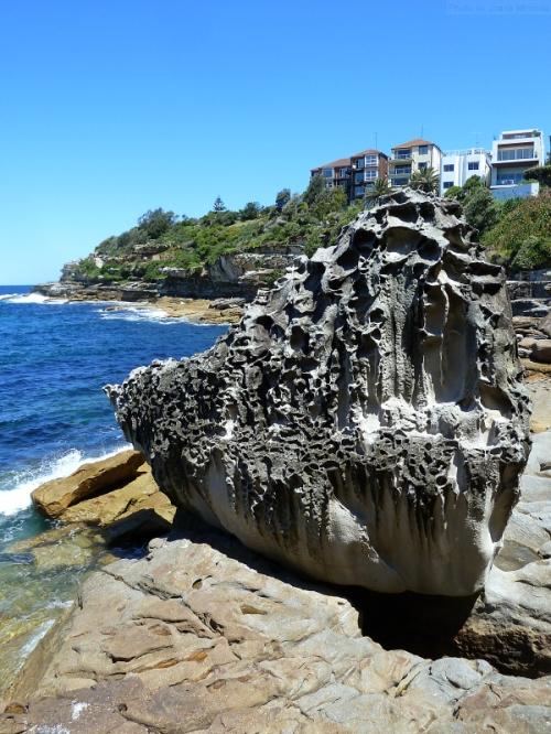 interesting rock along the coastal walk