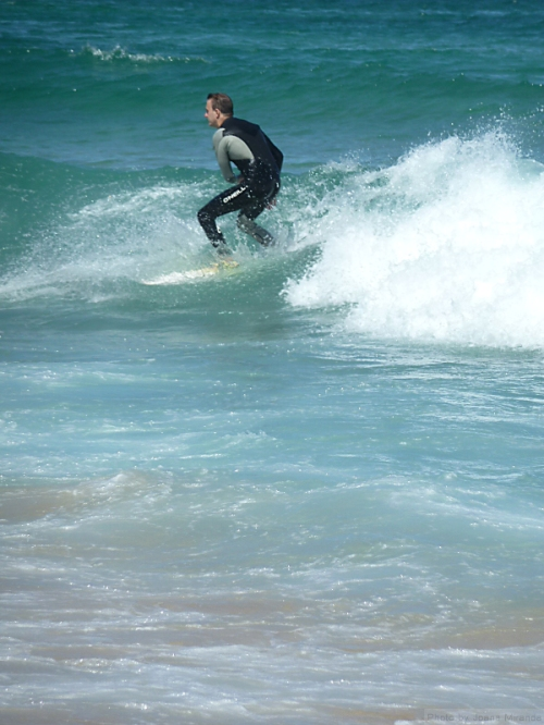 surfer riding the wave2