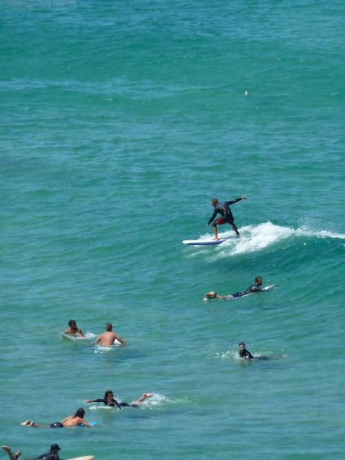 surfers off of the coastal walk in Australia