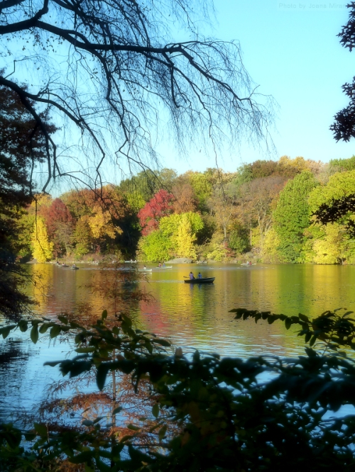 The lake in Central Park in the fall