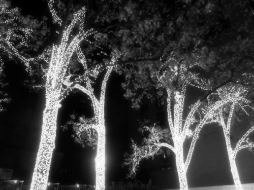 black and white photo of twinkly Christmas lights