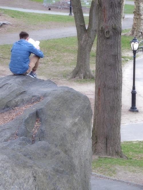 reader in Central Park