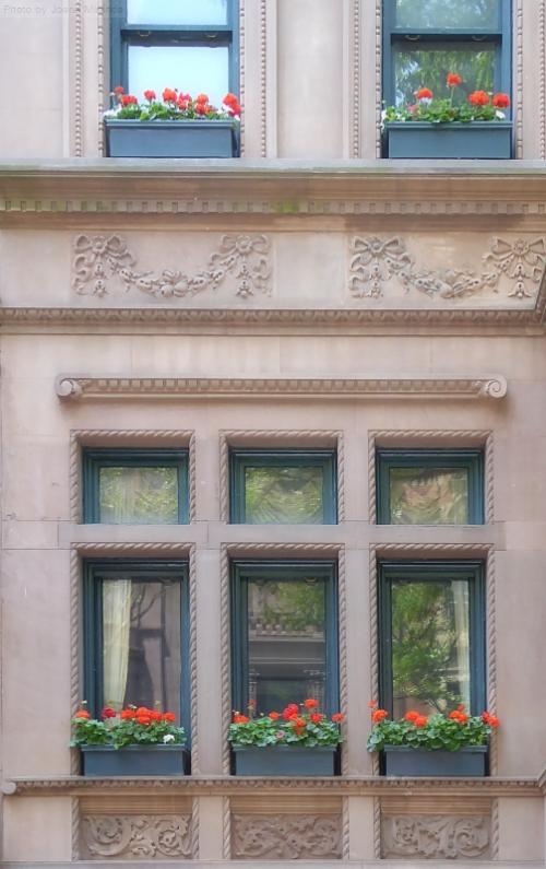 pretty brownstone windows