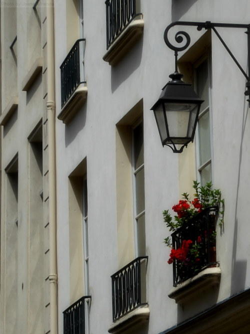 Modern building in Paris with pretty window box