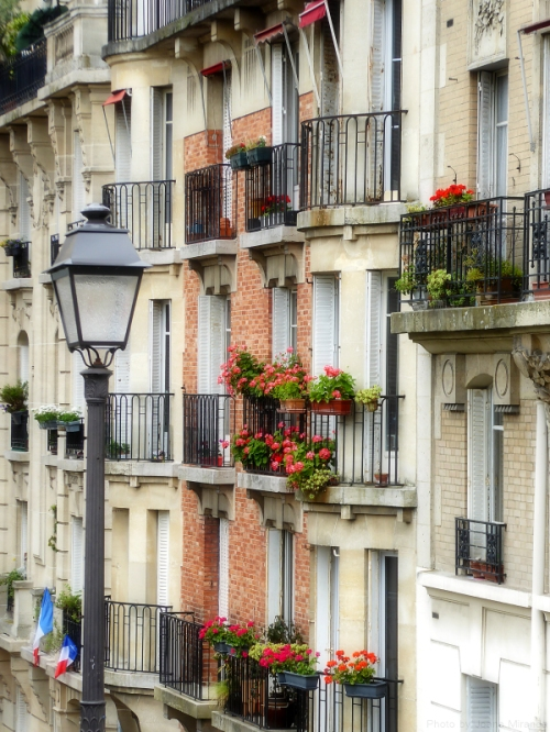 Montmartre windows