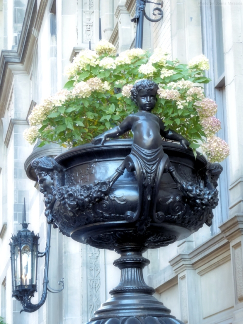 flower-pots-outside-the-dakota